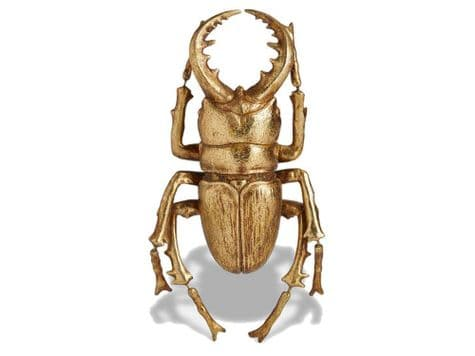 gold beetle wall hanging | decorative golden insect